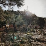 Mallorca: the MTB / Team She Rides - version